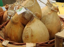 Caciocavallo Podolico Slow Food 21 Kg 2